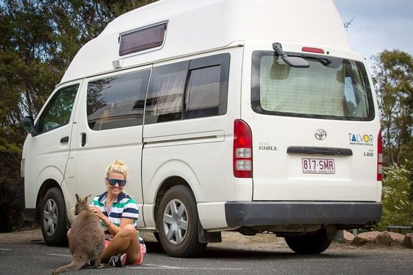 GoCheap 3-Berth Hi Top Campervan